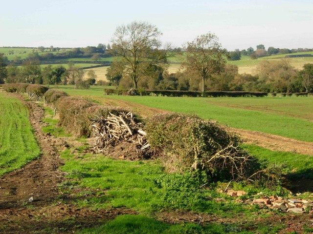 Farmland near Corn Hill
