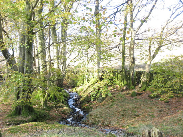 Fast flowing stream in the enclosed garden of Plas Uwch Llyn