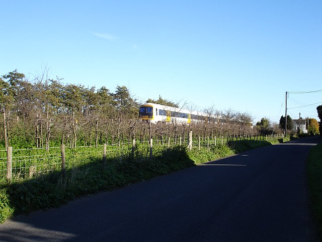 Railway and orchard