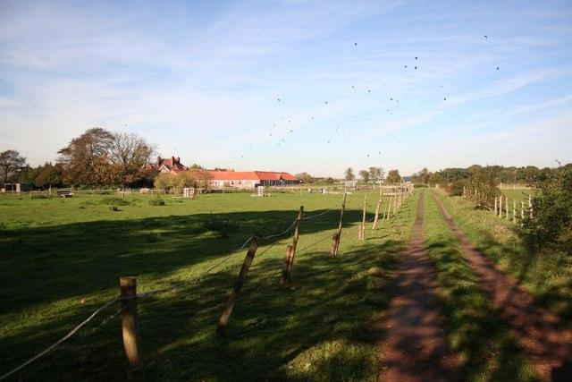 Carisbrooke Manor