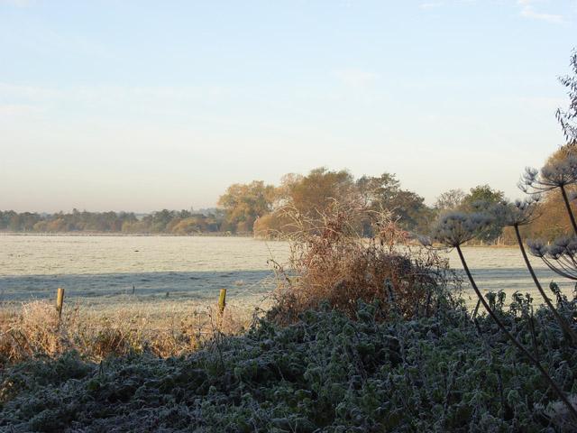 Farmland, Charvil