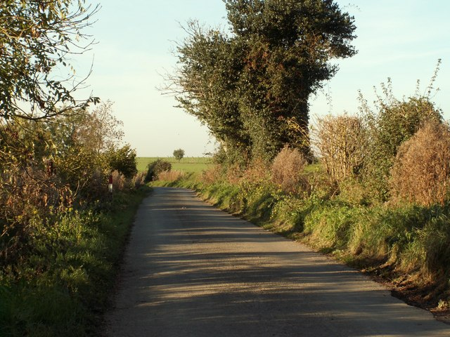 Country road near Lower Farm