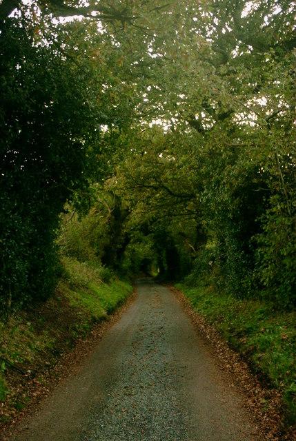 Butterhill Lane towards Smallrice