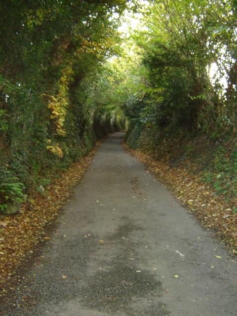 Sunken lane near Pentre Bach, Nercwys