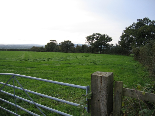 Field gate and the Welsh Hills