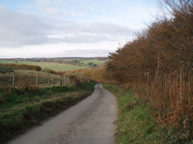 Road at Blagdon Hill