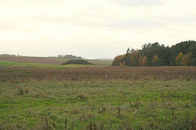 Boglands of Boghole.