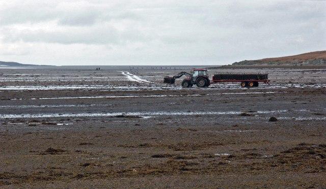 Oyster farming, Loch Gruinart, Islay