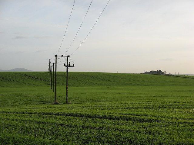 Fields outside Cowie.