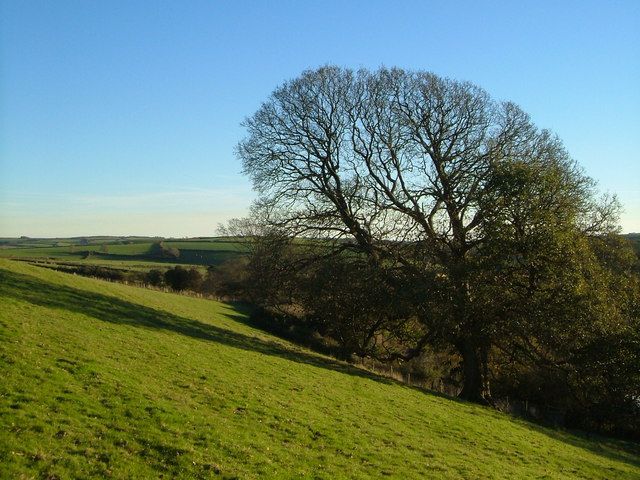 Above Boarshill