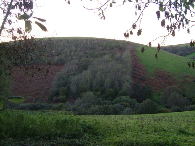 Hillside opposite Were Down