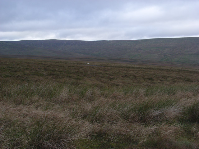 Burnhope Moor