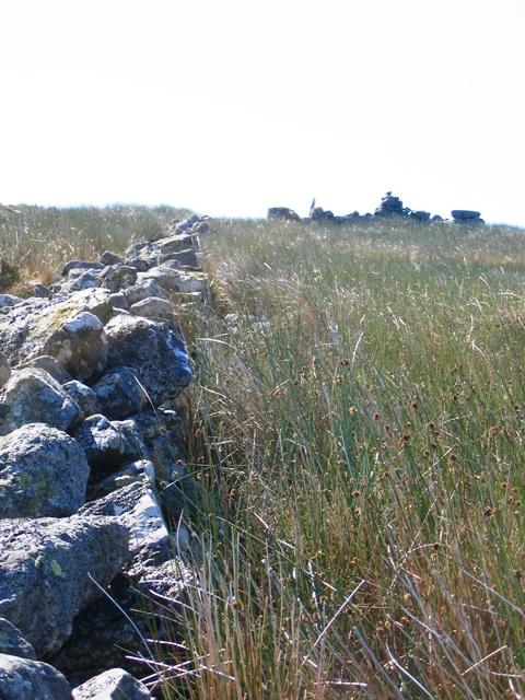 Ruined stone wall on Llechwedd Du