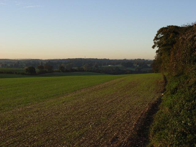 Farmland above Weston