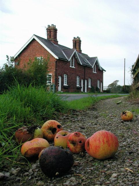 Ann Watson's Cottages, Humbleton
