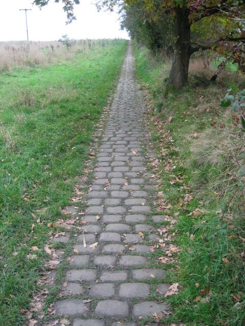 Nuttall Brow Cobblestones