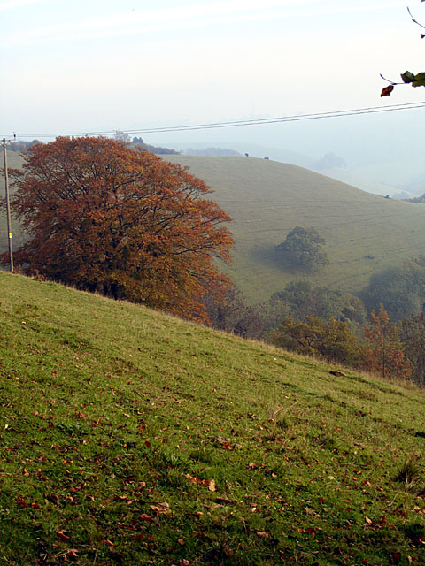 Looking towards Coombe Hill