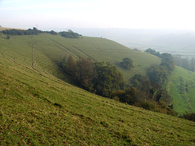 Strip Lynchets on Coombe Hill