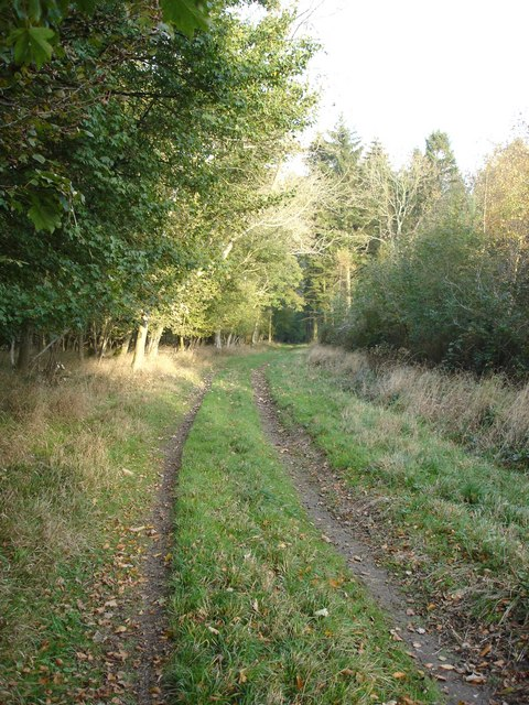 Track towards Blind Well
