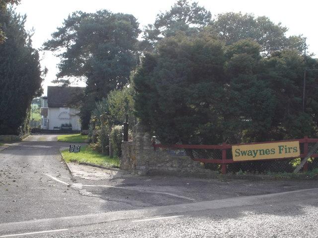 Swayne's Firs B&B