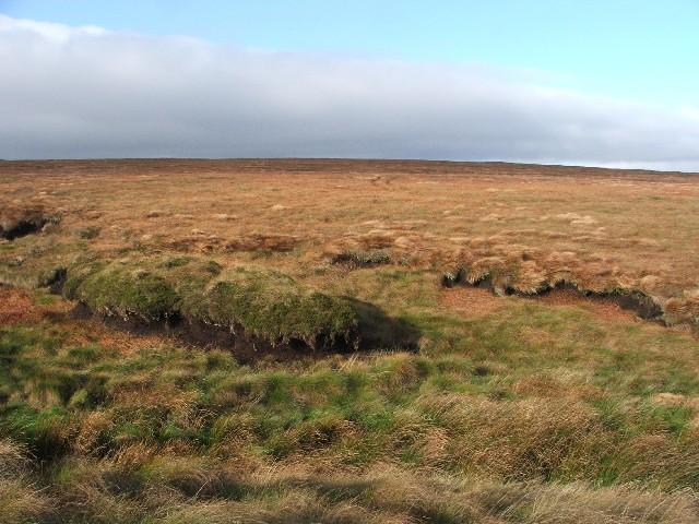 Autumn Moorland on Windle Side.