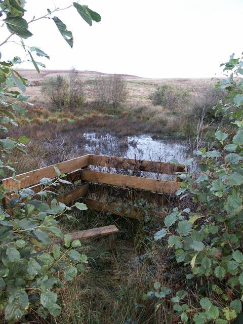 Lochan, near Ardtalla, Islay