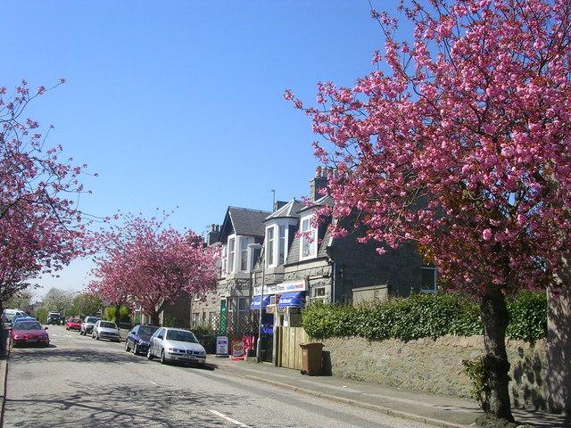 Brunswick Place, Ferryhill