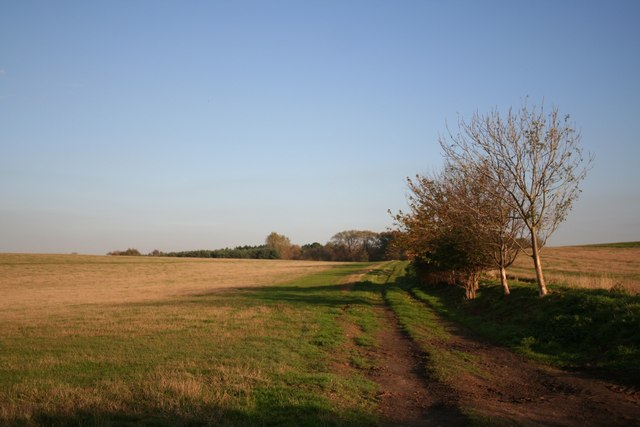 Track to Norbury Hills