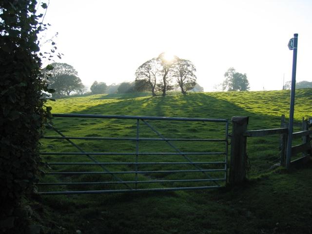 Field gate and public footpath