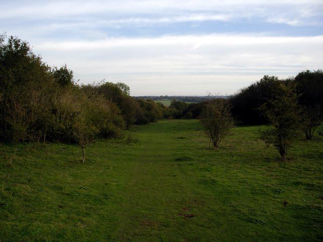 Lower part of Stockbridge Down