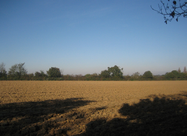 Ploughed field near Colchester Green