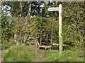 NY3359 : Stile on Hadrians Wall Path by Lis Burke