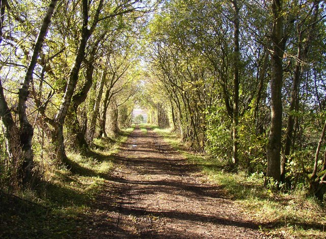 Old lane to Sowerby Church, Castle Sowerby