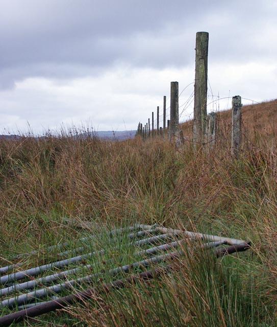 Moorland near Ardtalla, Islay