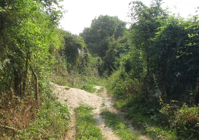 Byway from St Helen's Chapel to Rickling Church
