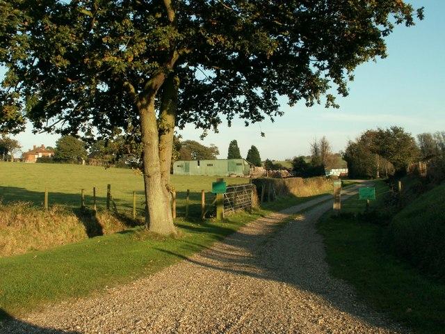 Mill Pond Farm