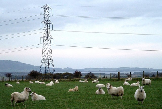 Pasture and Pylons