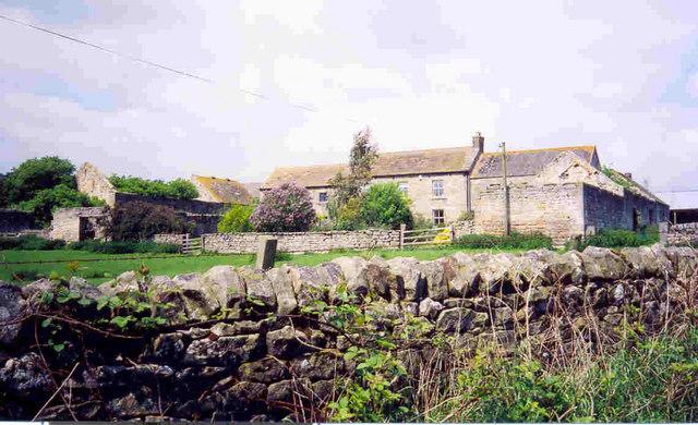 Fern Hill Farm
