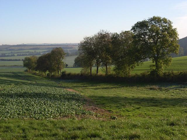 Farmland, Wexcombe