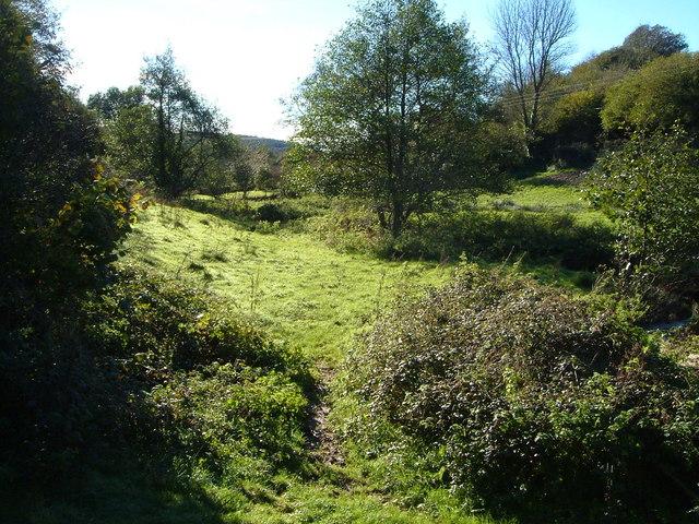 Meadow beside Ayleston Brook