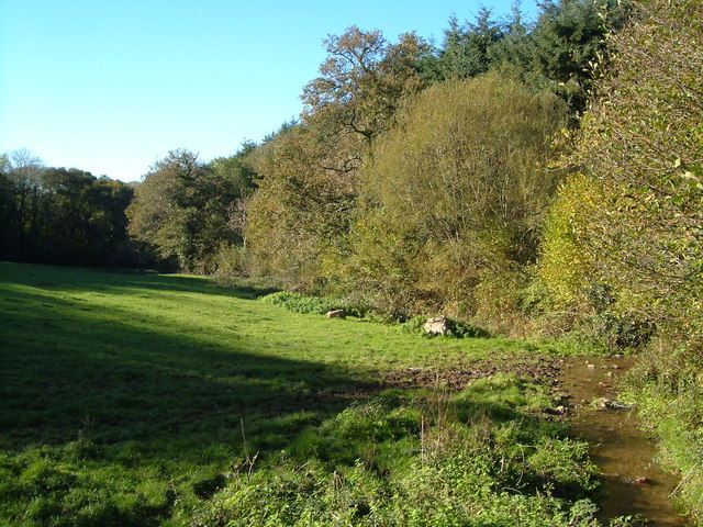 Field beside Wastor Wood