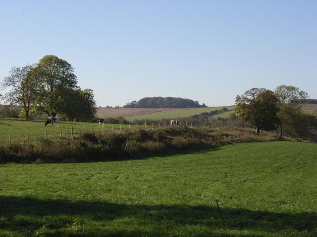 Pastures, Brunton