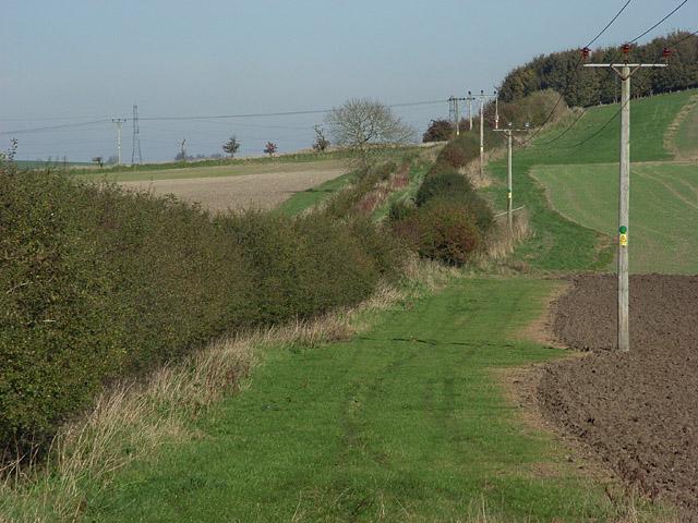 Farmland near Collingbourne  Kingston