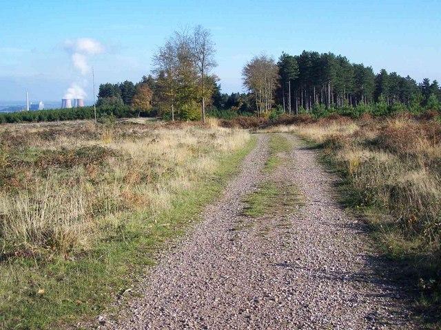 Track To Fairoak Lodge