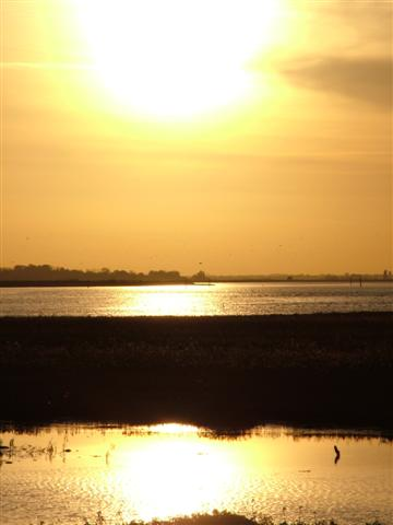 Sunset on Breydon Water. Norfolk