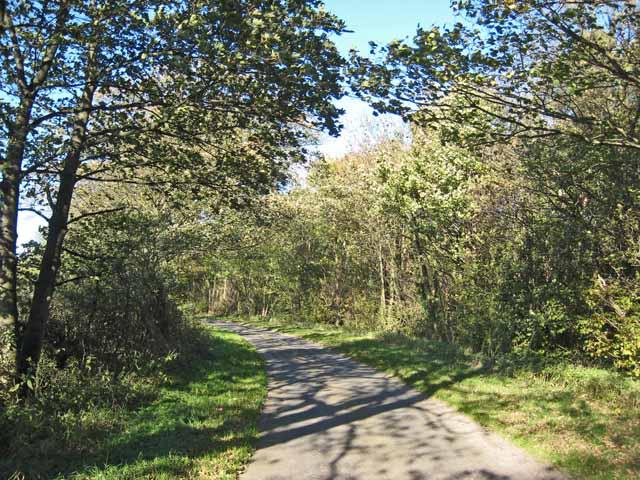 Lane near Watlass Moor