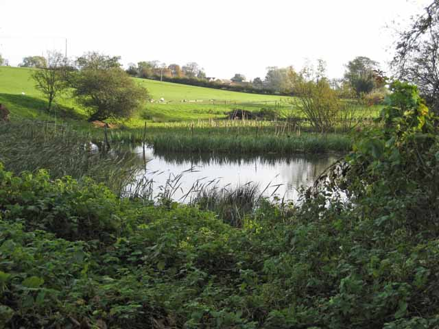 Pond near Cowling