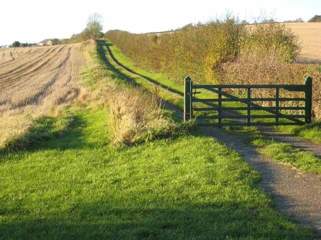 Rural driveway, near Thornton Watlass