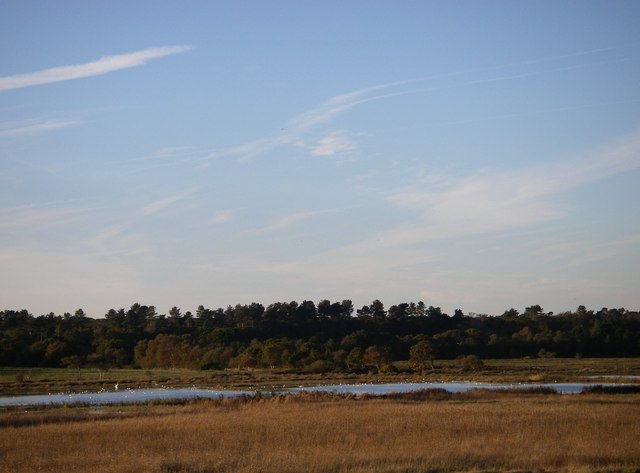 Dingle marsh and Dunwich Forest