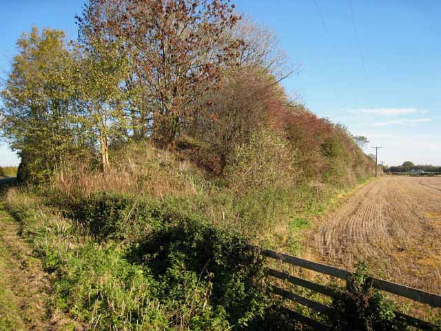 Old railway embankment, West Tanfield
